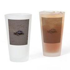 solitary turtle Drinking Glass