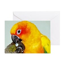 bird-license Greeting Card