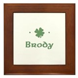 """Shamrock - Brody"" Framed Tile"