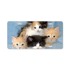 shelter-kittens12x20 Aluminum License Plate