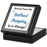 Sheltie Charge Keepsake Box