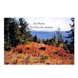 Green Mt. Little Pend Orielle Postcards (Package o