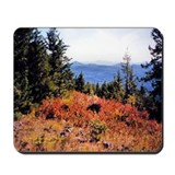 Green Mt. Little Pend Orielle Mousepad