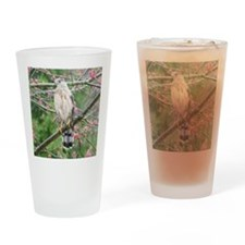 Coop10x8 Drinking Glass
