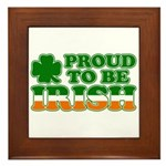 Proud to Be Irish Tricolor Framed Tile