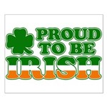 Proud to Be Irish Tricolor Small Poster