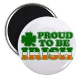 Proud to Be Irish Tricolor Magnet