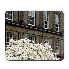 Edinburgh. Palace of Holyrood House (aka Mousepad