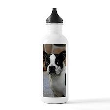 Boston Terrier 2 Water Bottle