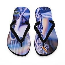 Unicorn_Falls_16x20 Flip Flops