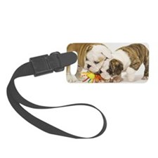 BD pups mini wallet Luggage Tag