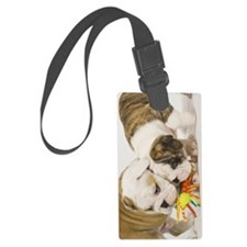 BD pups itouch Luggage Tag