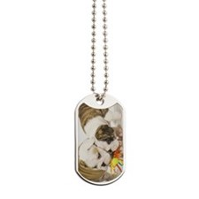 BD pups itouch Dog Tags