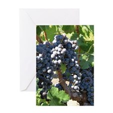 DHPurpGrapes1_7X5 Greeting Card
