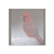 "CARDINAL CARD Square Sticker 3"" x 3"""