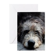 WolfhoundFace Greeting Card