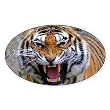 Atiger post Decal