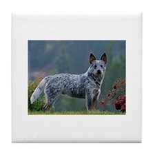 ACD in the Morning Tile Coaster