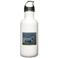 ACD in the Morning Water Bottle