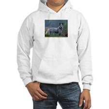 ACD in the Morning Hoodie