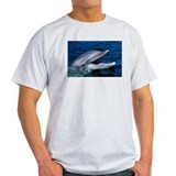 Happy Dolphin Ash Grey T-Shirt