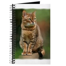 Funny Bengal cat Journal