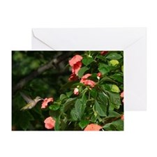 HBa14.7x9.67 Greeting Card