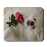 American Eskimo Dog Mousepad