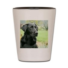 00cover-wildeshots-112110 076 Shot Glass