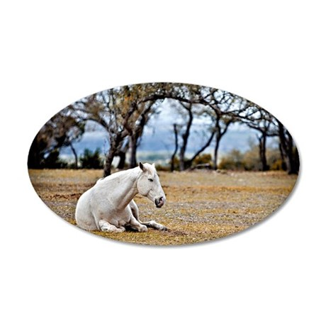 01jan-dk-11.5x9_-White-Horse 35x21 Oval Wall Decal