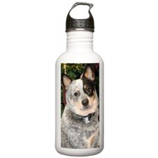 cattle-dog-phone Water Bottle