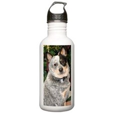 cattle-dog-photo Water Bottle