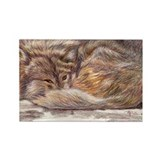 Wolf Spirit Rectangle Magnet (10 pack)