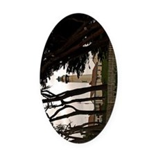 (9) Pigeon Point Fence Oval Car Magnet
