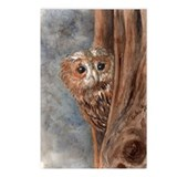 Night Owl Postcards (Package of 8)