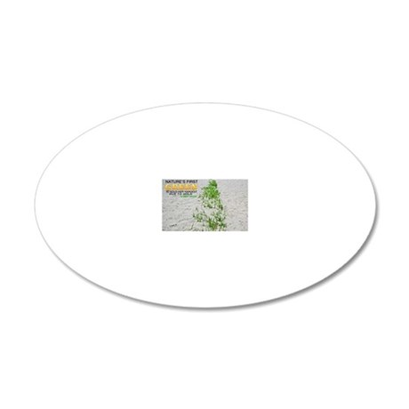 Natures First Green Quote on 20x12 Oval Wall Decal