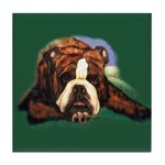 Brindle English Bulldog Tile Coaster