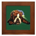 Brindle English Bulldog Framed Tile