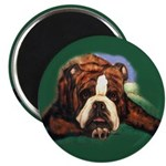 Brindle English Bulldog Magnet