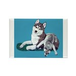 Siberian Husky and Puppy Rectangle Magnet (10 pack