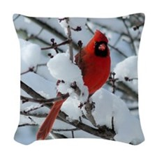CAWnt4.25x4.25SF Woven Throw Pillow