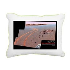 PIA10212-Poster Rectangular Canvas Pillow