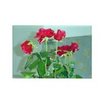 Roses Rectangle Magnet (100 pack)