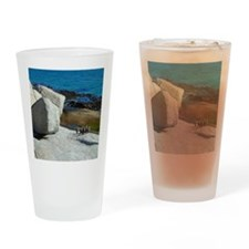 Penguins at Boulder Beach, Cape Tow Drinking Glass