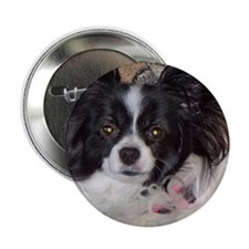 "Papillon 2.25"" Button"
