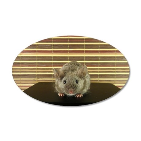 Mousey 35x21 Oval Wall Decal