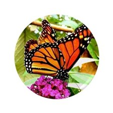 "Monarch Butterfly Wall Calendar Page,  3.5"" Button"