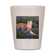 Cat In Bluebonnets Shot Glass