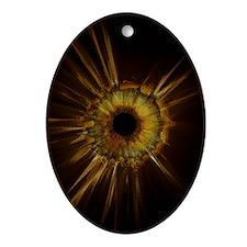 Third Eye_longer tilt2 Oval Ornament