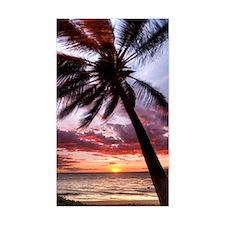 maui hawaii coconut palm tree  Bumper Stickers